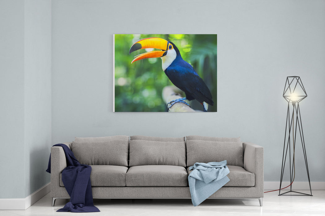 Exotic Toucan Bird In Natural Setting Near Iguazu Falls In Foz Do Iguacu, Brazil Canvas Wall Art Print