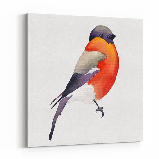 Watercolor BirdInvitation Card With Bright Watercolor Bird Watercolor Wildlife Natural Winter Christmas Robin Bird Watercolor Painted Bird Canvas Wall Art Print
