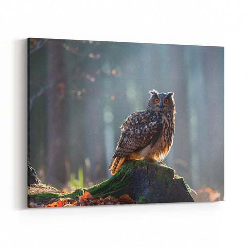 Eurasian Eagle Owl Bubo Bubo Sitting On The Stump, Closeup, Wildlife Photo Canvas Wall Art Print
