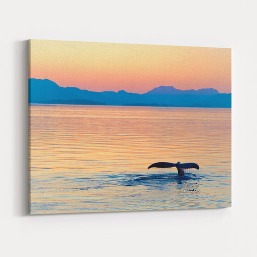 Alaska Whale Tail Sunset Canvas Wall Art Print