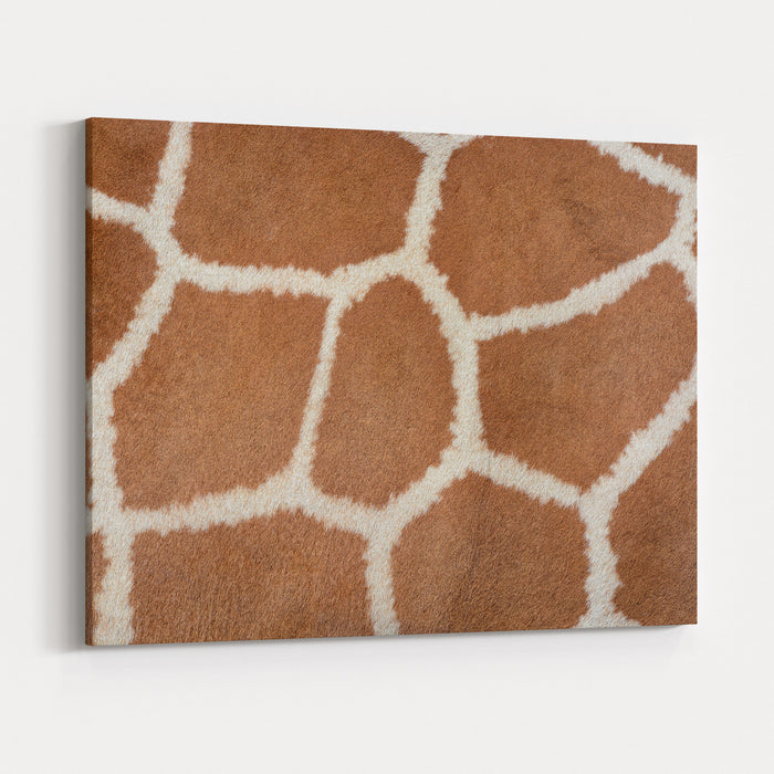 Animal Skin Background Of The Patterned Fur Texture On An African Giraffe Canvas Wall Art Print
