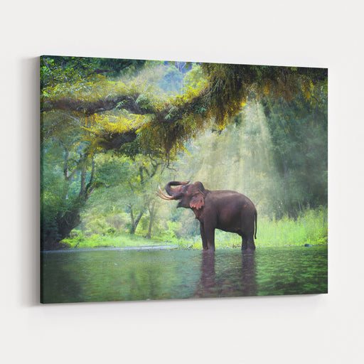 Wild Elephant In The Beautiful Forest At Kanchanaburi Province In Thailand, With Clipping Path Canvas Wall Art Print