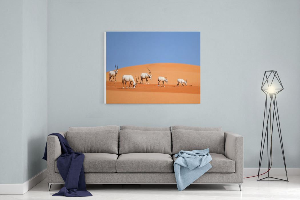 Arabian Oryx Family Canvas Wall Art Print