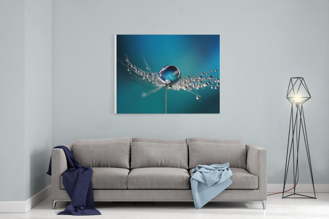 Beautiful Dew Drops On A Dandelion Seed Macro Beautiful Soft Light Blue And Violet Background Water Drops On A Parachutes Dandelion On A Beautiful Blue Soft Dreamy Tender Artistic Image Form Canvas Wall Art Print