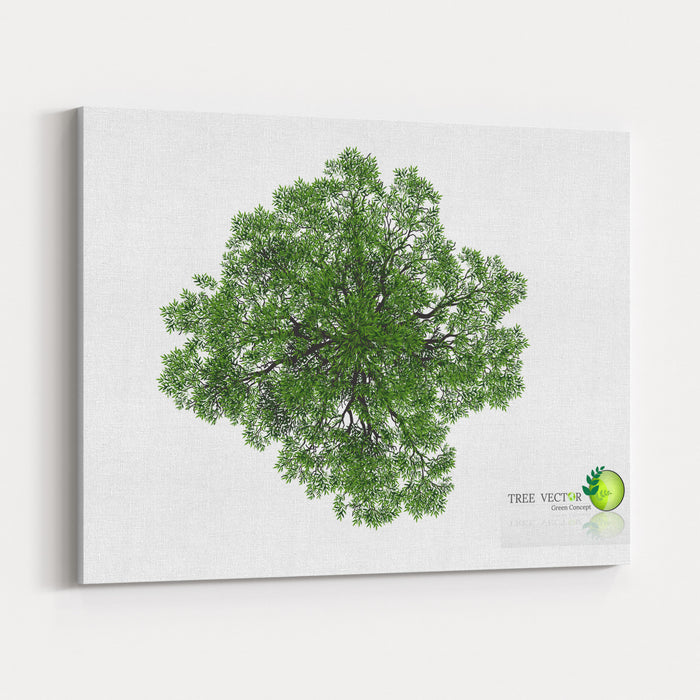 Trees Top View For Landscape Vector Illustration Decorative Branch Silhouette And Green Leaves Canvas Wall Art Print