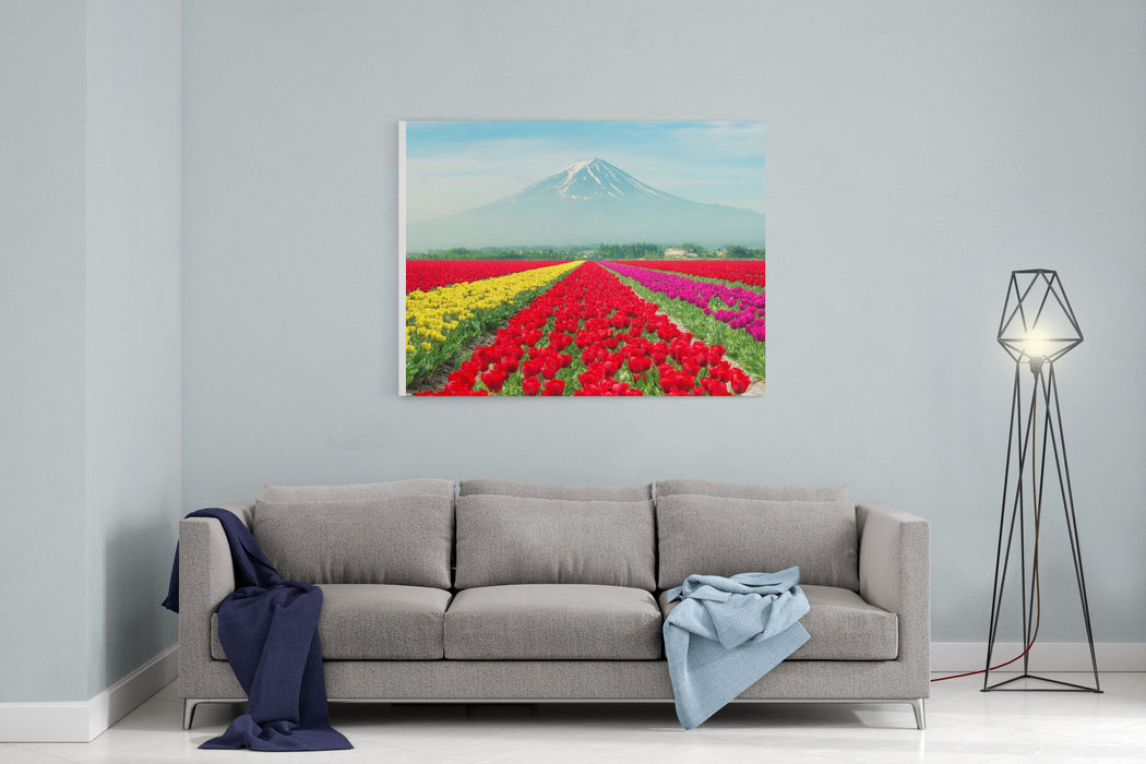 Landscape Of Japan Tulips With Mtfuji In Japan Canvas Wall Art Print