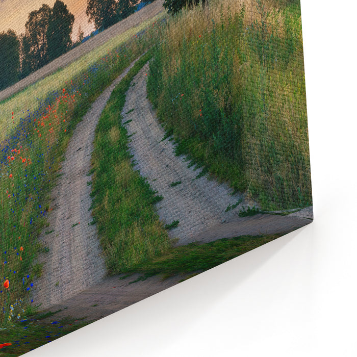 Summer Landscape With Country Road And Fields Of Wheat Masuria, Poland Canvas Wall Art Print