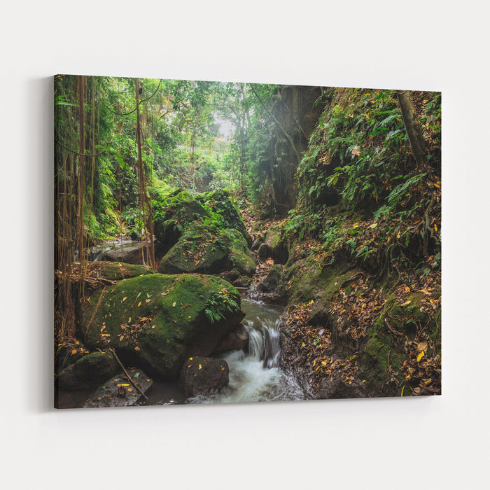 River In Stones Of Tropical Jungle Nature At The Sacred Monkey Forest Sanctuary, Ubud Region Jungle Nature Of Bali Island Nature Beauty Of Tropical Forest Natural Rainforest Landscape Of Indonesia Canvas Wall Art Print