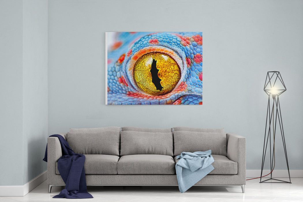 Colorful Tokes Gecko Amazing Eye Macro Canvas Wall Art Print