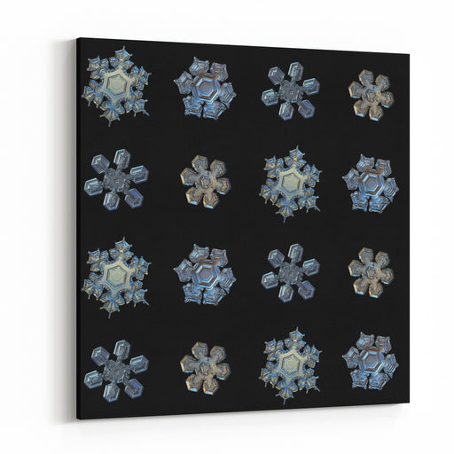 Set With Snowflakes Isolated On Black Background This Is Macro Photos Of Real Snow Crystals Medium Size Stellar Dendrites With Simple Shape, But Complex Relief Surface, Arranged In Square Grid Canvas Wall Art Print