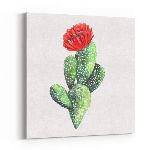 Watercolor Cactus Original Watercolor Illustration For Greeting Cards, Invitations, And Other Printing Projects Canvas Wall Art Print