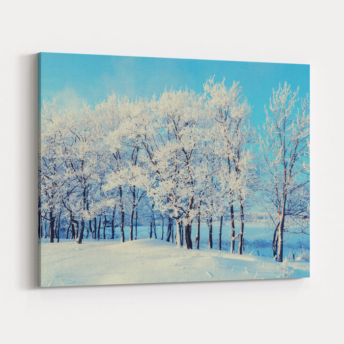 Winter Landscape  Snowy Beautiful Nature With Sunshine Over Snow Covered Forest Canvas Wall Art Print