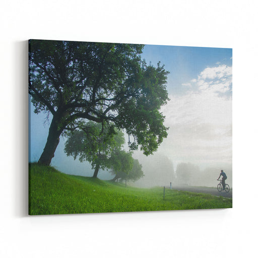 Man On Bicycle Ride Through Misty Landscape Near By Big Tree Photo Full Of Freedom  From Summer Holiday Adventure Trip Canvas Wall Art Print