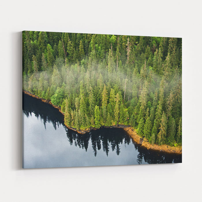 Aerial View Of The Mist Hanging In The Tongass Temperate Rain Forest, Misty Fjords National Monument, Alaska Canvas Wall Art Print