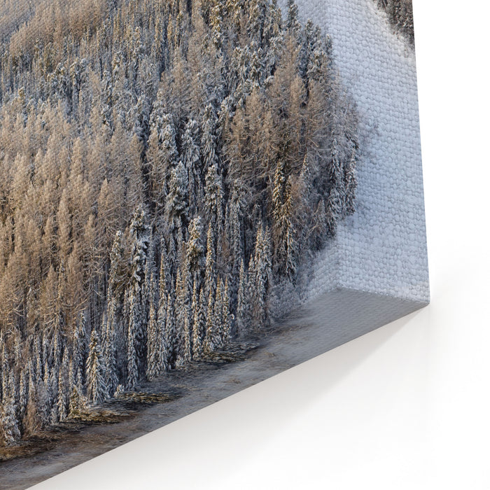 Aerial View Of Forest River In Time Of Winter Day Canvas Wall Art Print