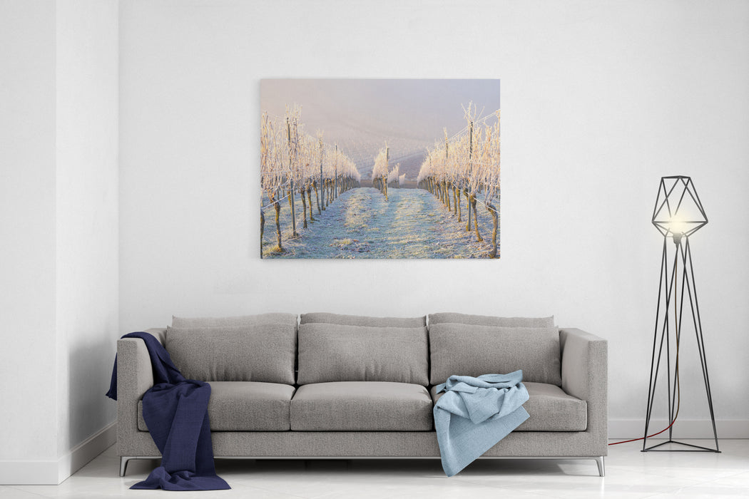 Winter Landscape In The Vineyard Canvas Wall Art Print