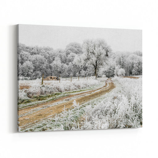 Frozen Landscape A Dirt Road Sinks Into The Forest On This Cold Winter Morning, The Bushes, The Trees And The Fences Are Covered With Frost Canvas Wall Art Print
