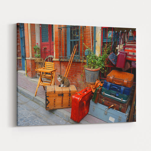 Photo Of Cute Cat Sitting In Small Street Shop In Old District Of Istanbul, Turkey Canvas Wall Art Print