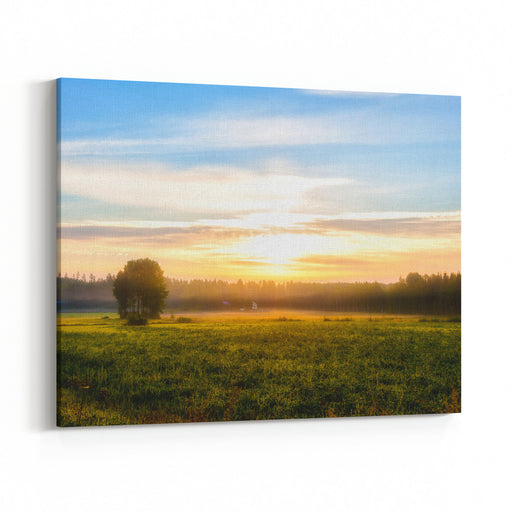 Summer Landscape  Field, Grass, House, Tree, Forest, Fog In The Morning Canvas Wall Art Print