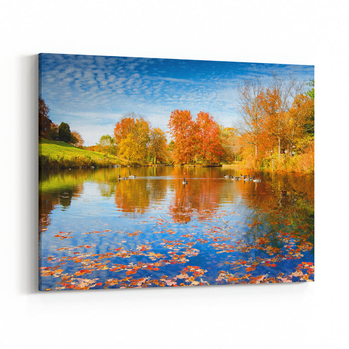 Autumn Season Starting In The Lake Side At Wonderful Sunny Day, Duck Swimming Along The Lake Canvas Wall Art Print