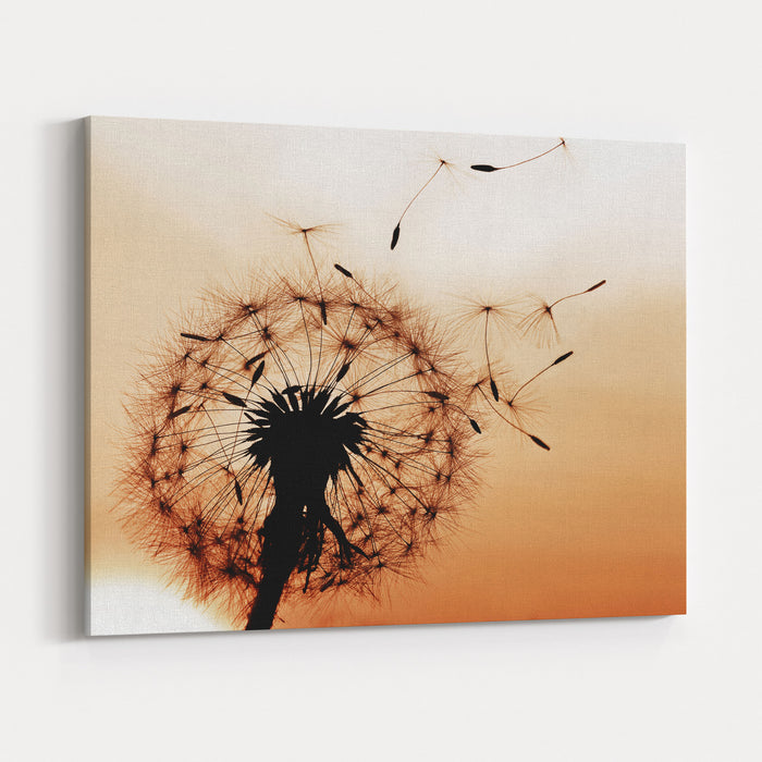 A Dandelion Blowing Seeds In The Wind Canvas Wall Art Print
