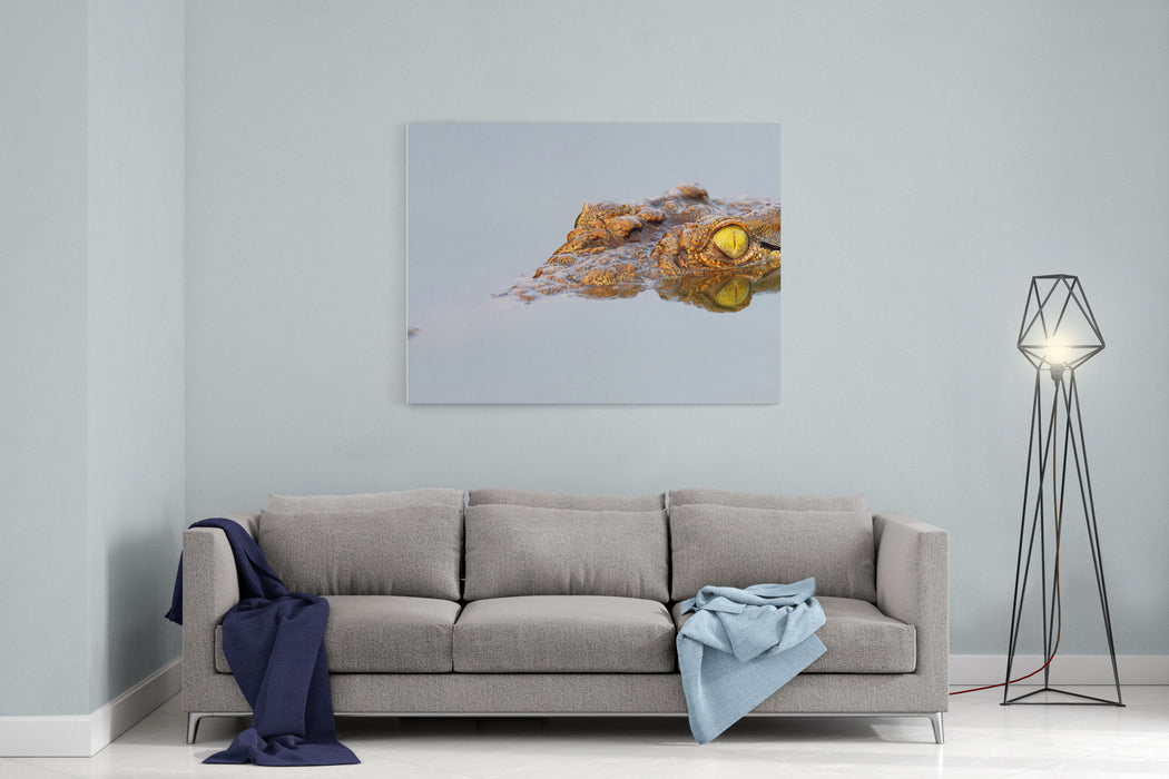 Closeup Of A  Nile Crocodile With  Reflection In Water  Crocodylus Niloticus Canvas Wall Art Print