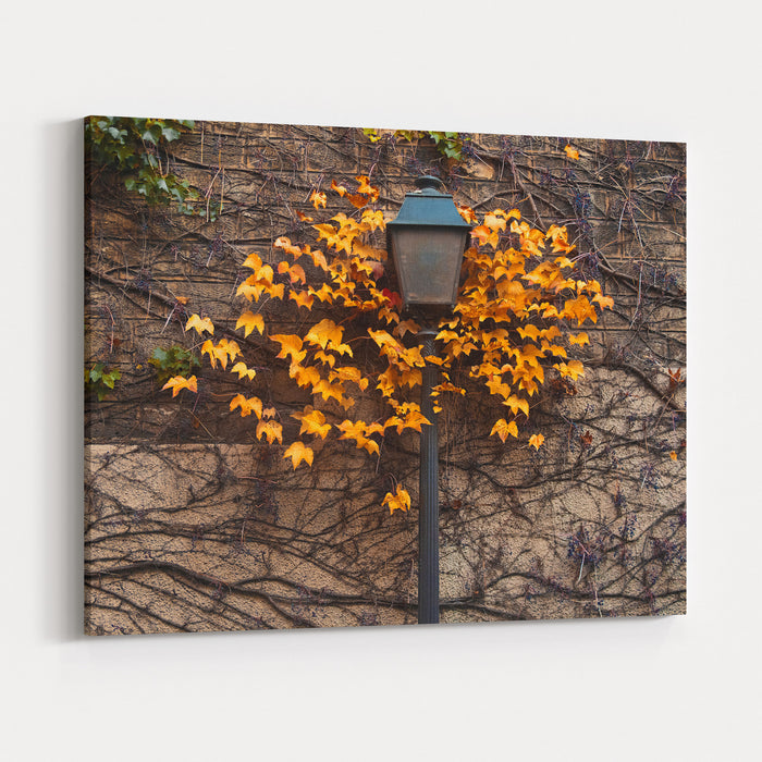 Autumn Street Lamp Paris Montmartre Canvas Wall Art Print