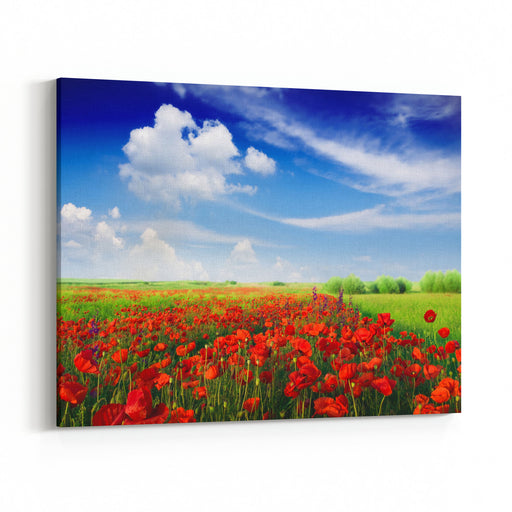 Red Poppies On Spring Meadow Canvas Wall Art Print