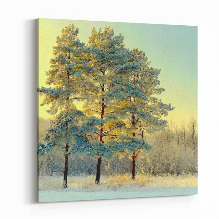 Beautiful Landscape With Winter Forest Canvas Wall Art Print