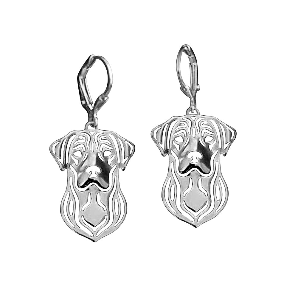 Labrador Retriever Sterling Silver Necklace Dangle Earrings Set by Ginger Lyne Lab Puppy Dog Pet Pendant Box Chain Doggie Animal Paw Print Heart Jewelry for Pit Mom Women Girls Teens