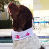 Pink Dog Paws Non Slip Headband