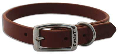 Coastal Latigo Town Collar