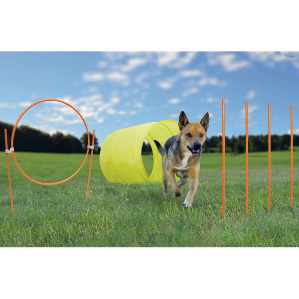 Outward Hound Agility Starter Kit Outdoor