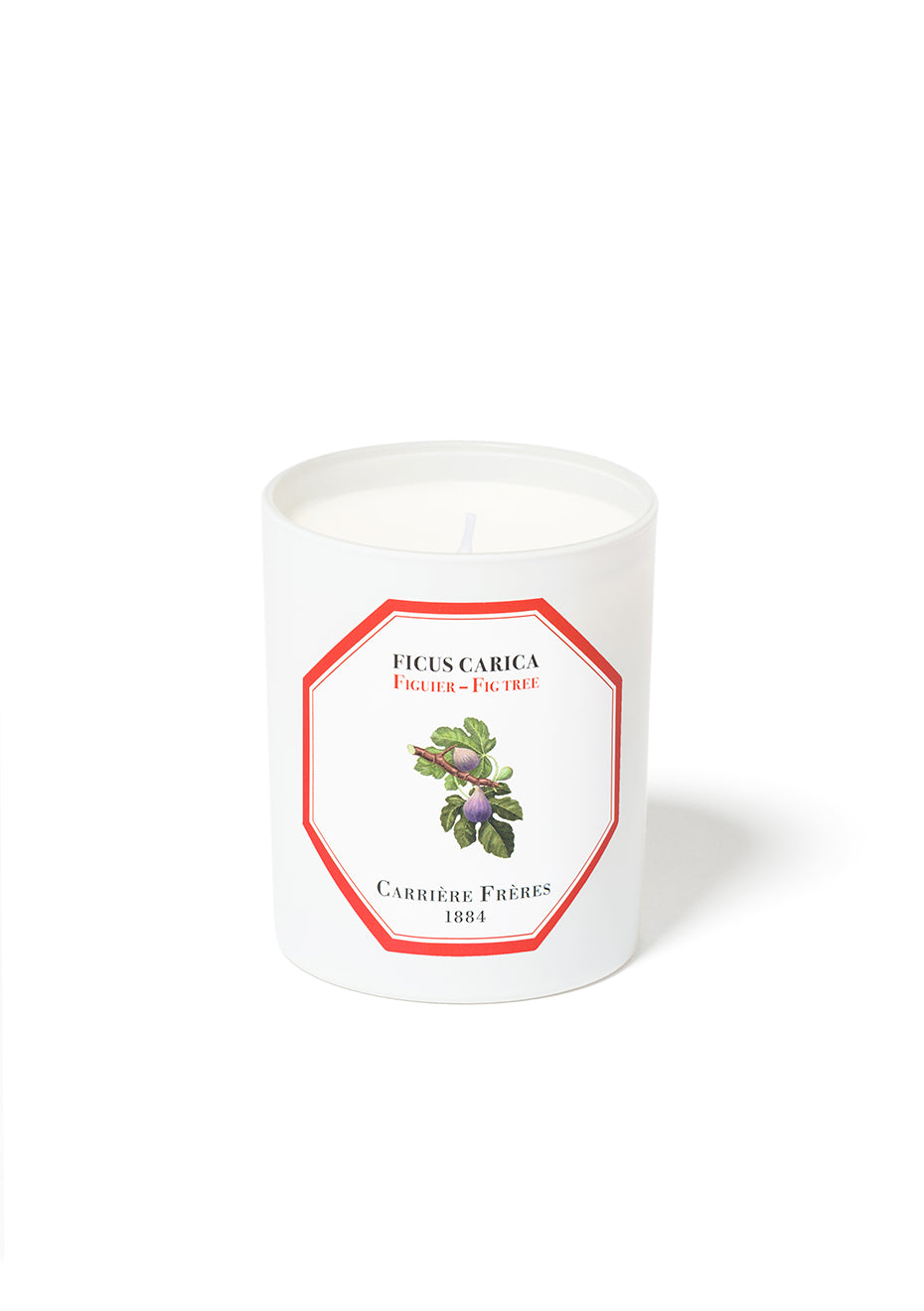 Fig Tree Scented Candle - Ficus Carica
