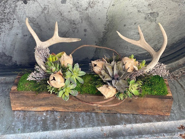 "Our Antler and Succulent Tabletop Centerpiece Décor is an arrangement that features a blend of warm rustic charm with unique beauty. This handcrafted piece begins with reclaimed barn wood that has been crafted into a trough and then hand assembled and filled with an artistic arrangement of lush faux succulents, concho pods, preserved greenery and real antlers. Size is 24"" long x 12"" high x 6"" wide and awaits a place in your home or sheltered outdoor area to be displayed for its uniqueness and beauty."