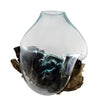 "Extra Large Hand Blown Molten Glass and Wood Root Sculptured Terrarium / Vase / Fish Bowl (13x13"")"