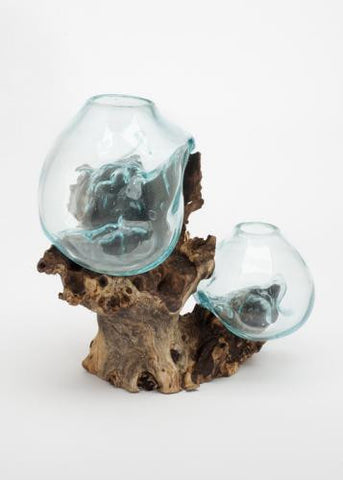 Hand Blown Molten Double Glass and Wood Root Sculptured Terrarium / Vase / Fish Bowl - inthegardenandmore.com