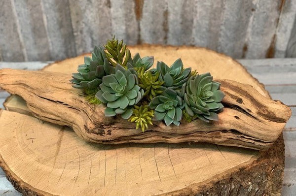 Our Hens and Chickens Succulent Log Tabletop Centerpiece Décor features life-looking faux hens and chickens succulents as well as ice plants, all elegantly nestled onto an authentic repurposed log of tumbled grape wood and makes a beautiful, back to nature display for your home or sheltered outdoor area. Each piece is a handmade work of art and each piece of wood may vary in shape and size due to the variations in the wood… making your creation a one-of-a kind beauty. Your creation would be approximately 17