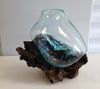 "Hand Blown Molten Glass and Wood Root Sculptured Terrarium / Vase / Fish Bowl (10x8"")"
