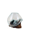 Mini Hand Blown Molten Glass and Wood Root Sculptured Succulent Bowl Terrarium