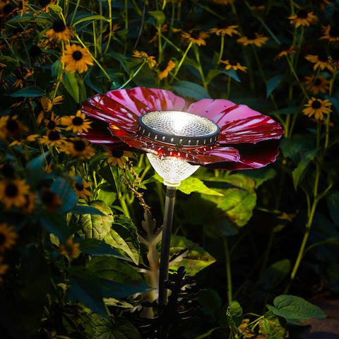 Our Royal Red Poppy Solar Light Garden Stake Statuary comes as a set of two and great for walkways, in between flowers and great with our cactus décor as well.