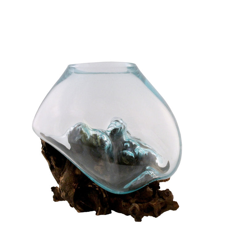 "Small Hand Blown Molten Glass and Wood Root Sculptured Terrarium / Vase / Fish Bowl (7x8"")"