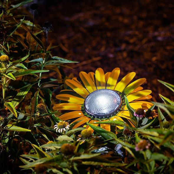 Our Yellow Daisy Solar Light Garden Stake Statuary comes as a set of two and great for walkways, in between flowers and great with our cactus décor as well.