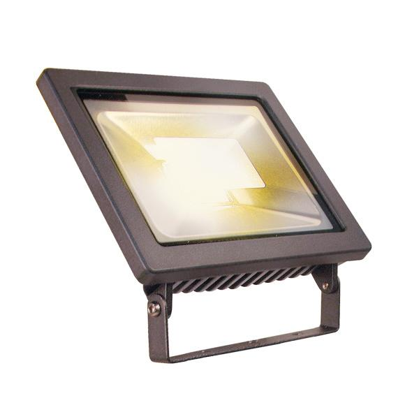 Techmar Garden Lights - Flood 20 - 20w flood light 12v