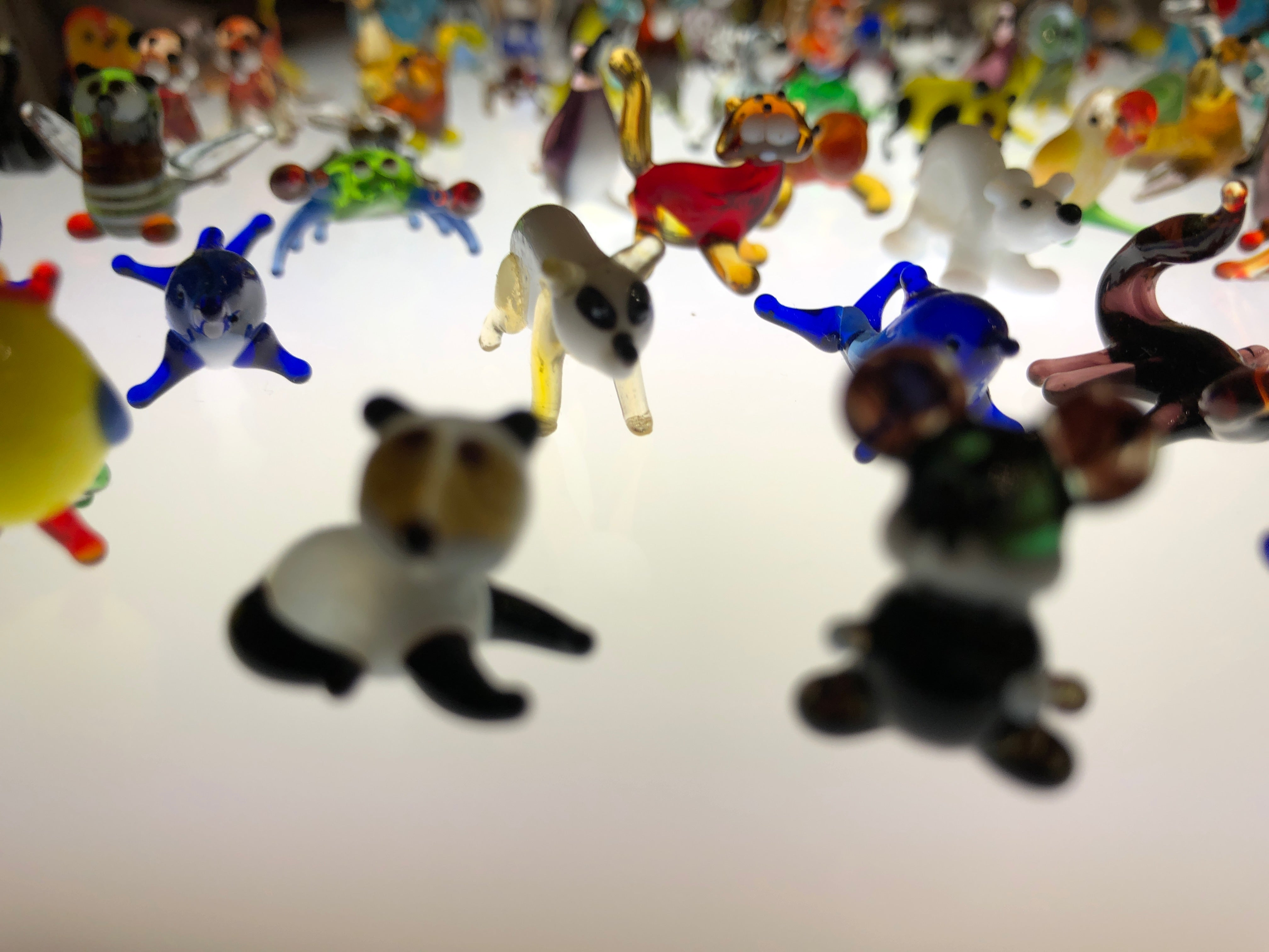 Tiny Glass Animals