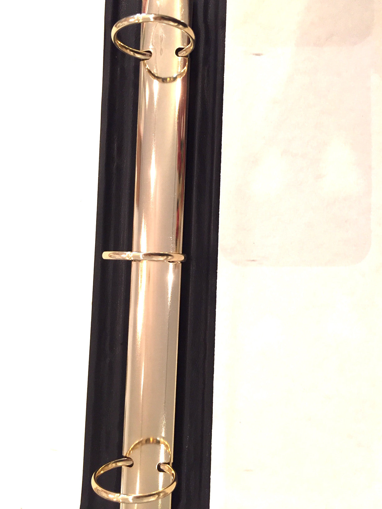 gold ring binder detail