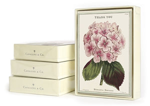 Fleur Thank You Boxed Notecards, set of 10