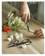 Load image into Gallery viewer, Rustic Carbon Steel Shears