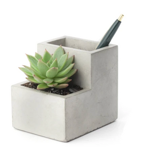 Concrete planter and pen holder (small)