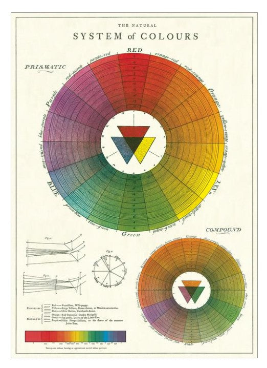 Decorative Paper - Color Wheel